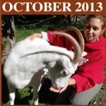 Check Out Our October Newsletter Online