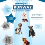 Pawject Runway FB version
