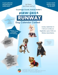 Pawject Runway FB version
