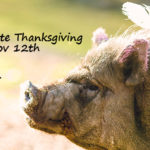 Join Us for Compassionate Thanksgiving – November 12th